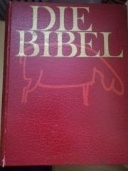 Hochwertige 5-teilige Bibel mit 3500