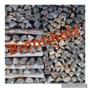 Brennholz Privatwald