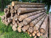 Brennholz Fichte Stammholz 4 oder