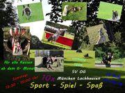 Sport Spiel Spaß HUNDETRAINING