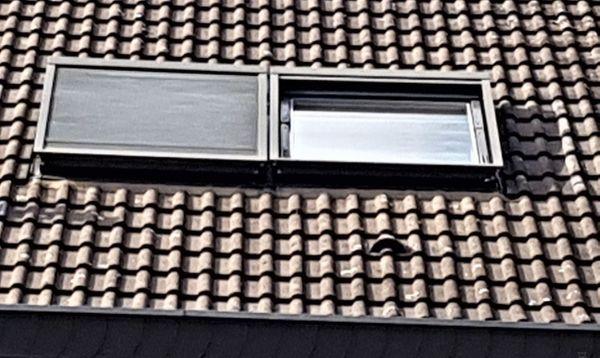 Dachfenster Velux 114 x 140