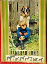Zigarettenalbum Kamerad Hund m MotivBriefmarken
