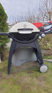 Weber Q 300 inklusive Weber