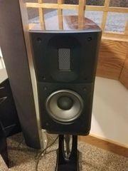 Raidho Acoustic D1 Regallautsprecher mit