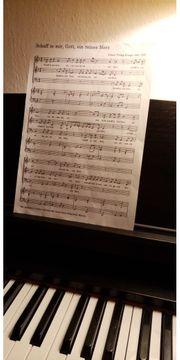 Ensemble sucht zwei Sänger innen
