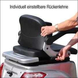 Elektro Dreirad E-Mobil Trike Pisa: Kleinanzeigen aus Bruchsal - Rubrik Trikes