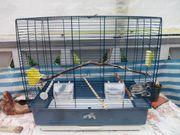 Grosser blauer Vogelkäfig