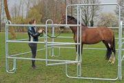 günstige mobile Schnellbau Pferdeboxen aus