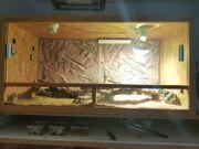 Holz-Terrarium 120x60x60 cm mit viel