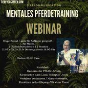 Mentales Pferdetraining Webinar per Skype