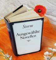 Theodor Storm Ausgewählte Novellen mit