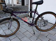 Fahrrad Wheeler 8800 Comp line