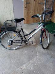 Fahrrad Vortex 7 Gang 26er