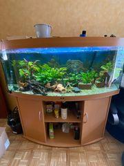 Aquarium 450 Liter Juwel