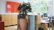 Arbeitsplatz in kreativer Bürogemeinschaft mit