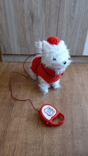 chichi Love Yorkshire Terrier