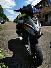 Roller 50 ccm Pegasus
