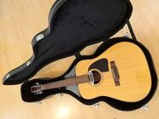 12 string Jumboakustik Terada Japan