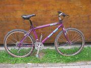 Damen-Retro-Mountainbike