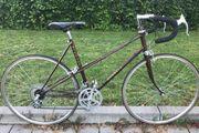Damen Rennrad 28 Zoll 10-Gang
