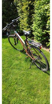 Damenfahrrad Tao Light Cross Bike