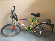 Herren- Jugend-Fahrrad von Pegasus