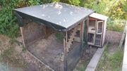 Hasen- Hühnerstall Outdoor Draußen - gut