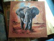 Bild von Elefanten