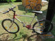 LX- Mountainbike Rahmengröße 17