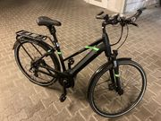 Pegasus E-Bike Solero Evo 8