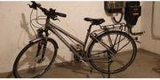 Damen Fahrrad Gudereit LC 95