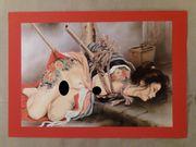 72 BDSM Japanese Bon-dage originaler
