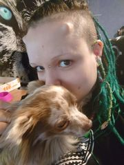 Hunde-Tierbetreuung Gassigeher MA Käfertal