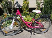 Pegasus Mädchen Fahrrad 24 Zoll