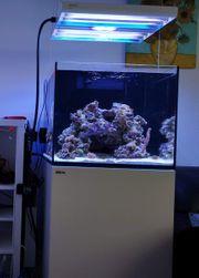 Red Sea Reefer 170 Komplettset
