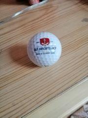 Golfball Gut Minoritenhof Titleist 33