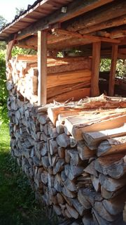 Brennholz weich und z T