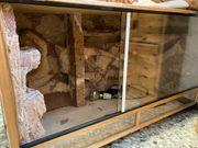 Terrarium Holz Reptilien 120x63x60cm