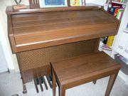 orgel elektro Keyboard Klavier