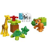 Duplo Set Tierkinder Zoo Zirkus