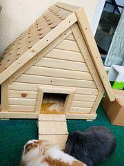 Kaninchen-Haus
