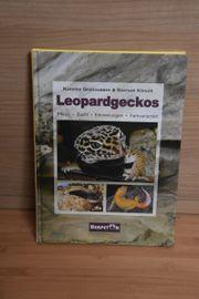 Leopardgeckos-Buch über Zucht und Haltung