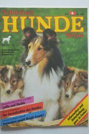 Schweizer Hunde Revue 3 4