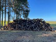 Stammholz Rundholz Kiefer und Fichten