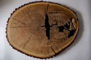 Couchtisch Platte aus Eichenholzscheibe und