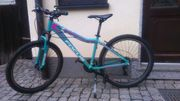 Mountainbike 24er Focus aquablue