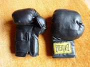 Original EVERLAST Boxhandschuhe 6 oz