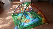 Fisher Price Rainforrest Spielbogen