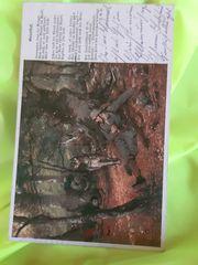 Postkarte 1916 Rotes Kreuz