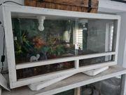 Terrarium 100x50x50cm incl Fassung